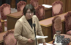 2月26日の衆院予算委員会分科会で質問する高橋ちづ子=国会内